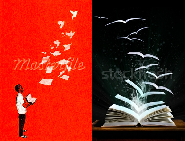book pages turning into birds