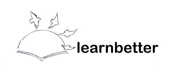 learn better custom logo instructions
